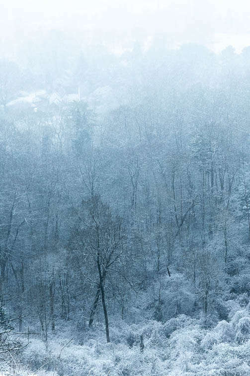 Reigate Professional Photographer Winter landscape